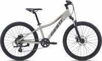 Велосипед Giant XtC Jr Disc 24 (Рама: One size, Цвет: Concrete)